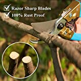 Pruning Shears Casfuy SK-5 Steel Blade Bypass Pruner with PTFE Coating and Safety Lock for Garden