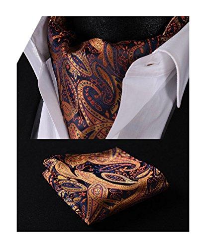 Ascot Tie (HISDERN Men's Paisley Jacquard Woven Self Cravat Tie Ascot Set One Size Orange / Navy Blue)