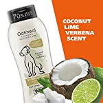 Wahl Dry Skin & Itch Relief Pet Shampoo for Dogs – Oatmeal Formula with Coconut Lime Verbena & 100% Natural Ingredients – 24 Oz 12