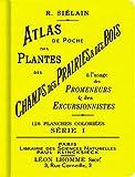 Atlas de poche des plantes des champs, des prairies et des bois (série I)