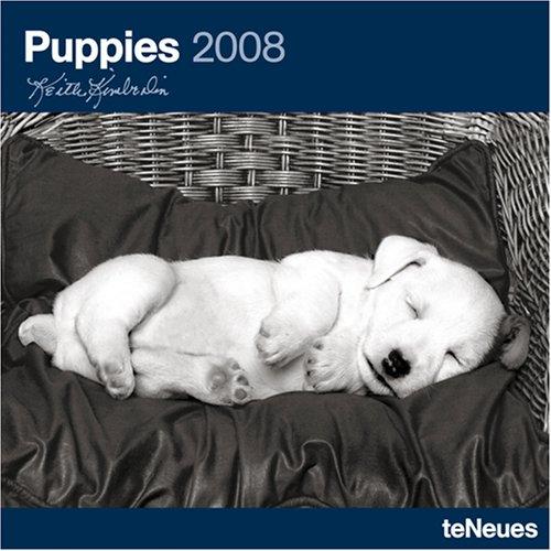 Puppies 2008 Calendar (Calendar 2008 Puppies)
