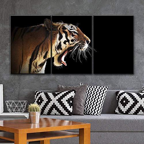 3 Panel A Tiger on Black Background x 3 Panels