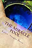 The Miracle Pool (Train Wreck) (Volume 1)