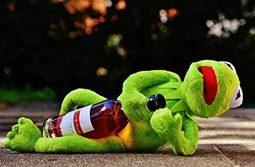 Gifts Delight Laminated 36x24 inches Poster: Kermit Frog Wine Drink Alcohol Drunk Rest Sit Figure Funny Frogs Animal Plush Stuffed Animal France Spain Germany Wine Bottle