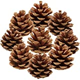 Sea Team 36-Pack Pine Cone Ornaments Hanging Pinecones Christmas Tree Decorations, 2-2.5 inches