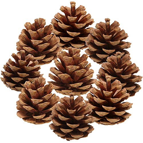 Pine Cone Craft (Sea Team 36-Pack Pine Cone Ornaments Hanging Pinecones Christmas Tree Decorations, 2-2.5)