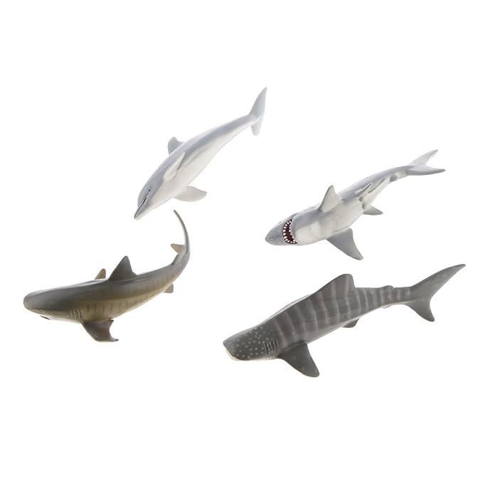 Tolle Tigerhai Färbung Seite Bilder - Beispiel Wiederaufnahme ...
