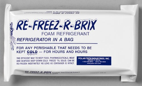 Ice Tech Bucket (Polar Tech RB30 Re-Freez-R-Brix Foam Refrigerant Pack, 9