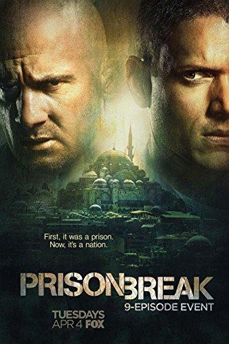 Kirbis Prison Break Sequel Movie Poster 18 x 28 Inches