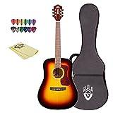 Guild D-140 SB-KIT-1 Acoustic Guitar