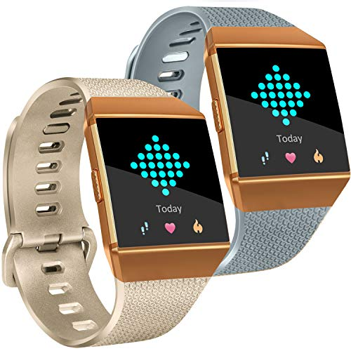 Tobfit Compatible Silicone Bands Replacement for Fitbit Ionic (2 Pack), Classic Wristbands Accessories Sport Straps for Women Men, Large, Champagne Gold, Gray