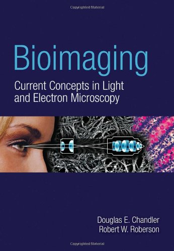 Bioimaging: Current Concepts In Light  &  Electron...