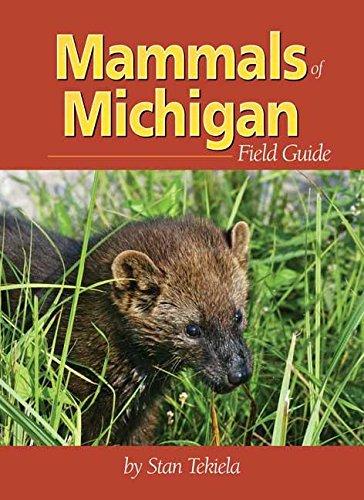Mammals of Michigan Field Guide (Mammal Identification Guides) (Field Animals)