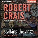 Stalking the Angel: Elvis Cole - Joe Pike, Book 2