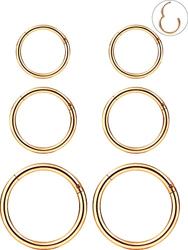 6 Pieces 16 Gauge Stainless Steel Nose Ring Hoop Seamless Clicker Ring Ear Lip Piercing Jewelry, 3 Sizes (Rose - With People Wide Noses