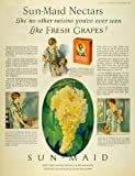 1926 Ad Sun Maid Raisins Nectars Dried Fruit Housewife - Original Print Ad