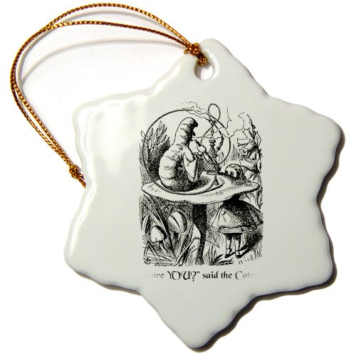 3dRose orn_193796_1 Who are You-Smoking Caterpillar Quote from Alice in Wonderland-Snowflake Ornament, Porcelain, 3-Inch