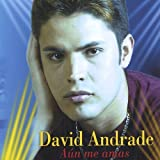 Aun Me Amas by Andrade, David (2004-11-30)
