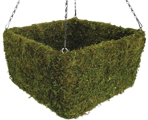 SuperMoss (29312) Preserved Moss Square Hanging Basket, Spring Green, Large by Super Moss