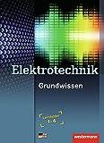 Elektrotechnik Grundwissen: Lernfelder 1-4: Schülerband, 3. Auflage, 2010