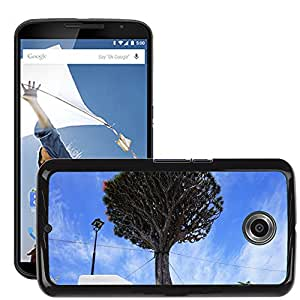 Hot Style Cell Phone PC Hard Case Cover // M00169924 Canary Island Dragon Tree Support // LG Google Nexus 6