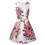 ZAY Women Porcelain Print Flare Sleeveless Vintage Floral Dress XS 101