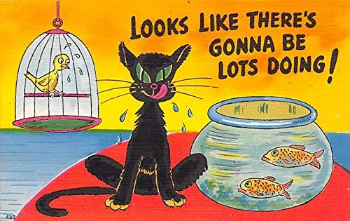 Misc Animals Cat Comic Unused