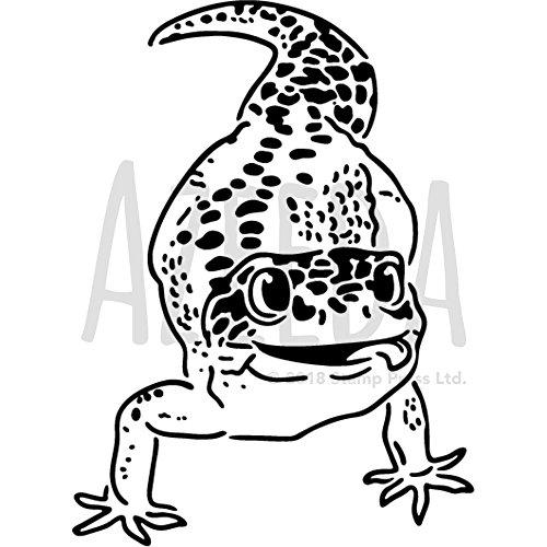 Gecko Paper The Best Amazon Price In Savemoney Es