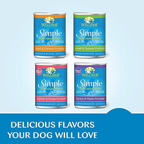 Natural Balance For Sensitive Stomach Limited Ingredient Dog Food Reviews