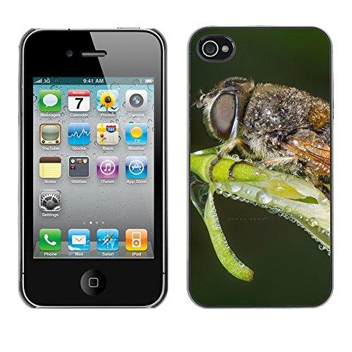 Premio Sottile Slim Cassa Custodia Case Cover Shell // F00012883 insecte // Apple iPhone 4 4S 4G