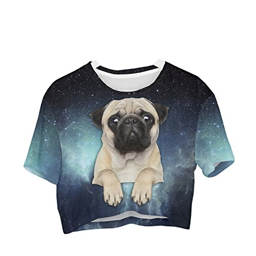 Fringoo Girls Women's Cropped Baggy Oversize T-Shirt Festival Summer Crop Top Party Fashion Jersey Emoji (One Size Fits S/M / L, Galaxy Pug - Tee)