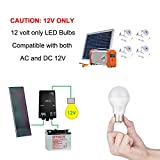 Tento Lighting E26 E27, Edison Base, Low Voltage