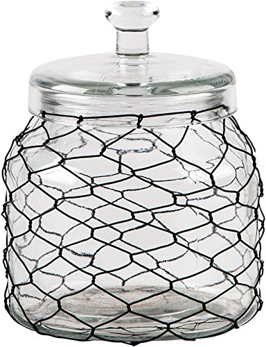 Home Essentials 74 Ounces Fiddle And Fern Chicken Wire Canister ()
