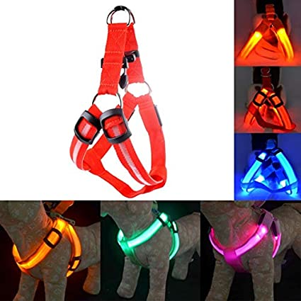 Recargable Led Nylon Pet Dog Arnés para Gatos Led Luz Intermitente ...