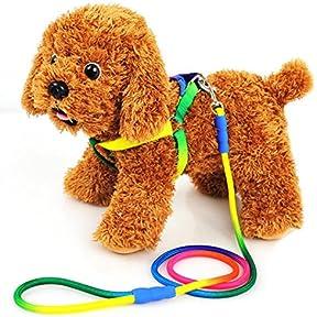 Pet Dog Training Leash,kaifongfu Rainbow Color Belt Pet Dog Traction Rope Round Training Leash (M, Multicolor)