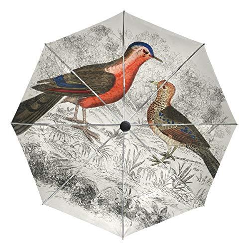 Senuu Vintage Drawing Partridge Bird Umbrella Large Travel Auto Open Close Sun Blocking Umbrellas for Women Men -