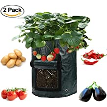 Asunflower 10 Gallon Garden Planting Grow Bags, 2 Pack Potatos Planter Tub with Access Flap for Harvesting,Vegetable Packs w/Holes for Drainage