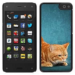 // PHONE CASE GIFT // Duro Estuche protector PC Cáscara Plástico Carcasa Funda Hard Protective Case for Amazon Fire Phone / American Shorthair Ginger Red Yellow Cat /