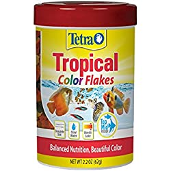 Tetra TetraColor Natural Color Enhancing Tropical Fish Flakes, 2.2 oz
