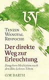 Der direkte Weg zur Erleuchtung: Dzogchen-Meditation nach den Bön-Lehren Tibets