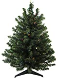 Northlight  25645114 Pre-Lit Natural 2 Tone Pine Artificial Christmas Tree with Multicolored Lights, 2'
