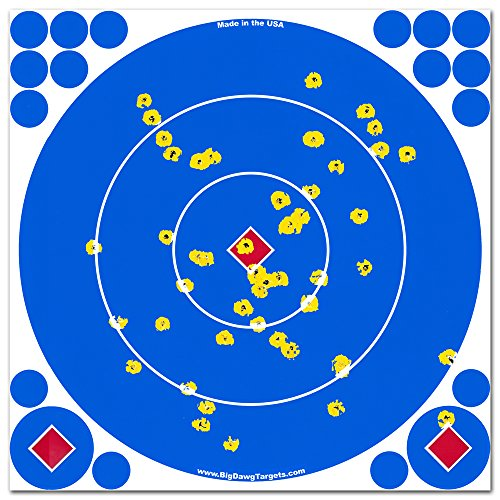 Big Dawg Targets - Adhesive 12 Inch Reactive Splatter Shooting Targets - 25 Pack