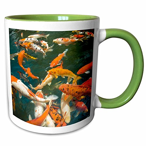 3dRose Danita Delimont - Fish - Ornament Koi, Shopping Mall, Malacca, Malaysia -AS23 SWS0093 - Stuart Westmorland - 11oz Two-Tone Green Mug - Westmorland Mall