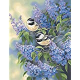 Dimensions Needlecrafts Paintworks Paint By Number, Chickadees and Lilacs