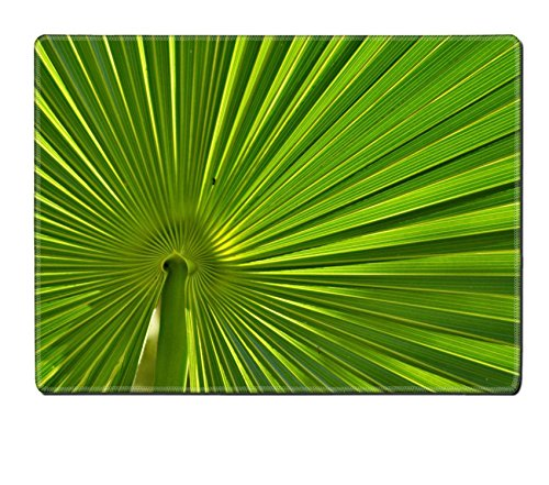 [MSD Placemat IMAGE ID 20069083 Big green striped leaf from a palm tree] (Palm Frond Placemat)