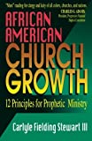 African American Church Growth: 12 Principles of Prophetic Ministry by Carlyle F. Stewart (1994-02-01)