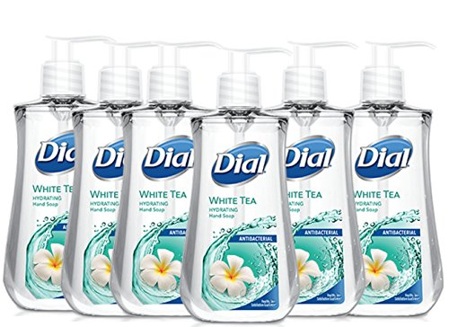 Dial Moisturizer Liquid (Dial Antibacterial Liquid Hand Soap with Moisturizer, White Tea, 7.5 Ounce (Pack of 6))