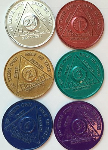 SET of 6 Medallions, Chips, Tokens - Medallion 24hr 1mo 2mo 3mo 6mo 9mo Commemorative by Sober Medallions (Palms Chip)