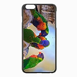 iPhone 6 Plus Black Hardshell Case 5.5inch - parrots water birds Desin Images Protector Back Cover
