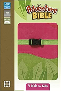 NIV Adventure Pink and Green Soft-Tone Bible